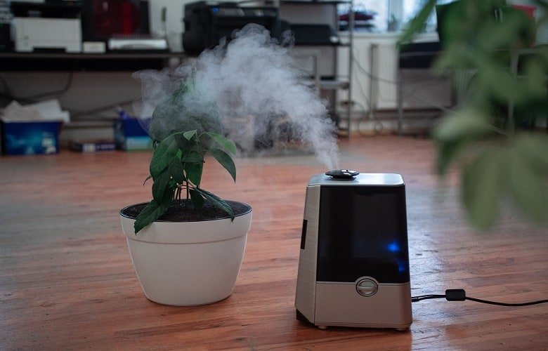 Best Air Purifiers For Allergies And Pets